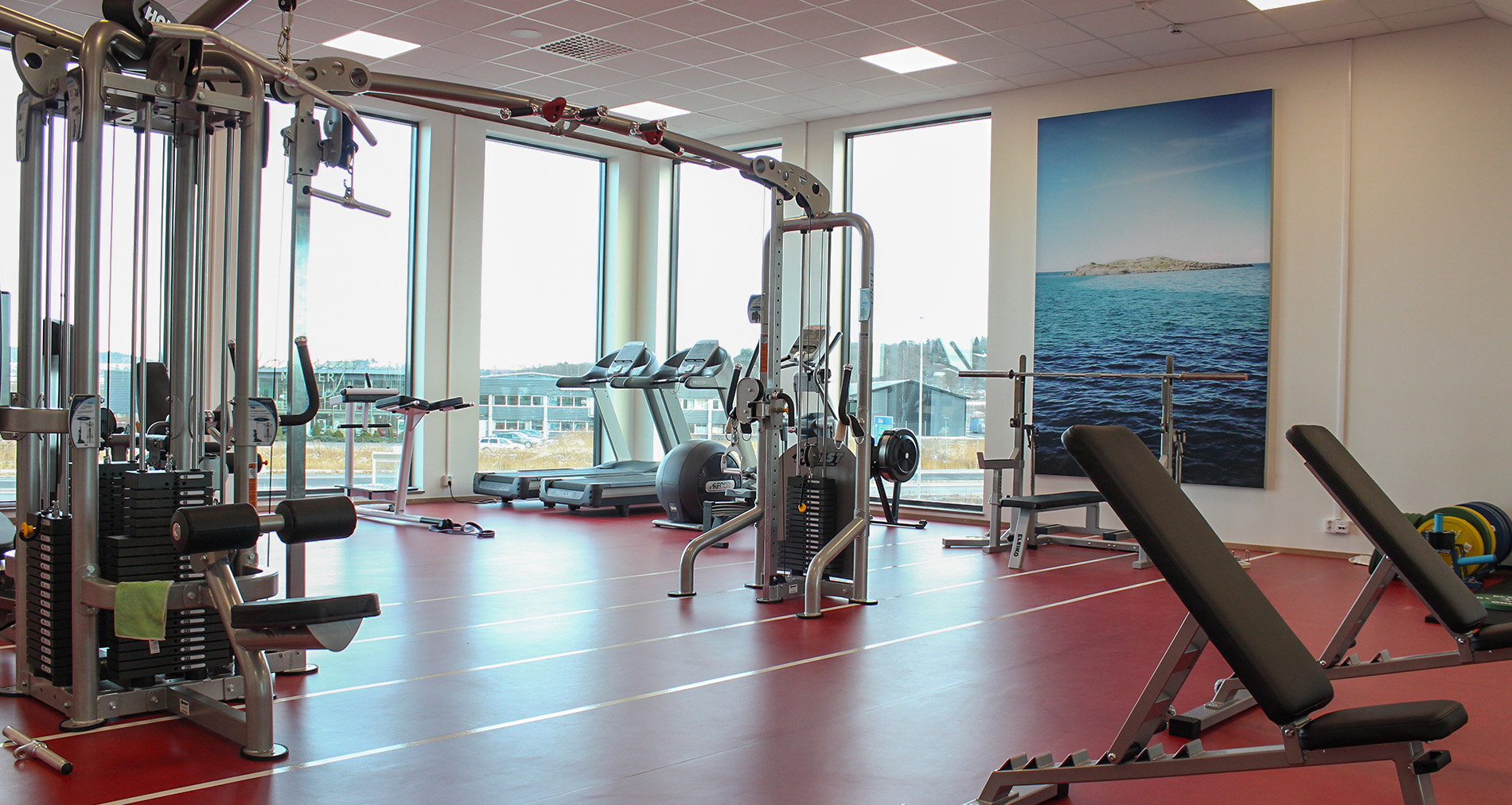 Gym Utrustning